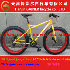 Tianjin Gainer Snow Bicycle pictures & photos
