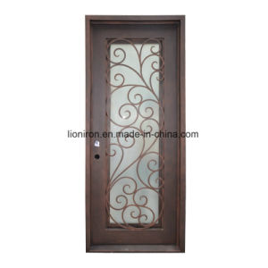 Square Too Iron and Glass Entry Doors for House pictures & photos