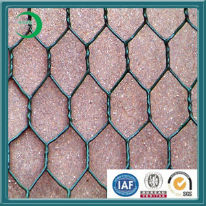 Discount Coated Hexagonal Mesh Wire (xy-08) pictures & photos