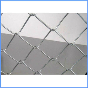 Low Price PVC Coated Chain Link Fence in Guangzhou pictures & photos