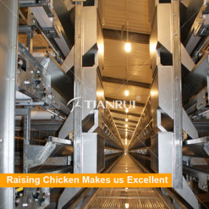 Tianrui design hot galvanized H type Layer Raising Equipment for modern shed pictures & photos