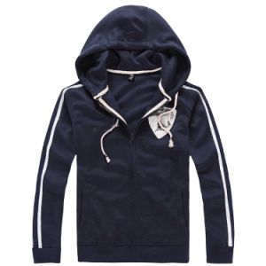 Custom Cotton/Polyester Embroidery Hoodies Sweatshirt of Fleece Terry (F025) pictures & photos