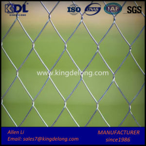 50 X50mm Home Garden Hot Dipped Galvanized Chain Link Fence pictures & photos