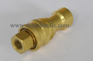 Brass Pull and Push Quick Coupling pictures & photos