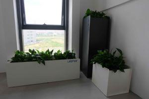 Uispair 100% Steel Planter Modern Office Hotel Home Garden Decoration pictures & photos