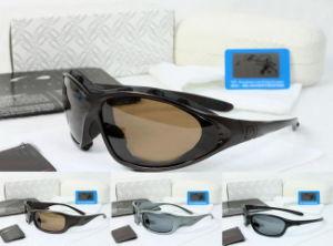 Brand Sunglasses pictures & photos