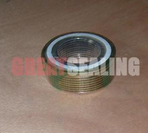Spiral Wound Gasket (G-SW700) pictures & photos