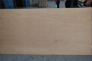 Hot Sale 18mm C2 Grade Nature Birch Plywood pictures & photos