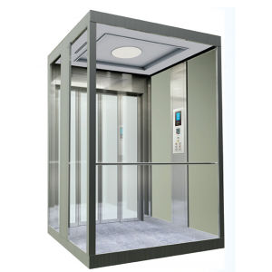 LINGZ Small Lift for Villa Use pictures & photos