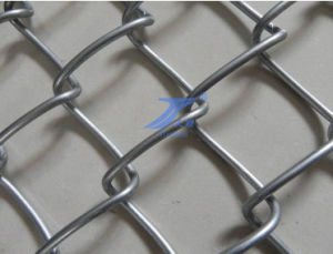 Electro Galvanized Chain Link Mesh with Low Price pictures & photos