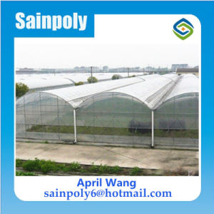 Low Cost Plastic Film Greenhouse for Garden pictures & photos