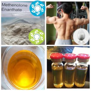 99% High Quality Muscle Growth Methenolone Enanthate CAS 303-42-4 pictures & photos