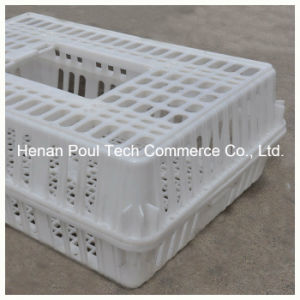 Plastic PE Material Chicken Transport Cage pictures & photos