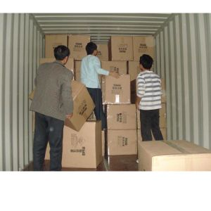 Pre Shipment Inspection/Container Loading Check Inspection pictures & photos