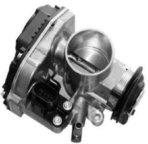 Throttle Body, Throttle Valves for Brazil Market