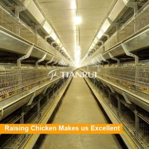 Galvanized Baby Chicken Cages Rearing House pictures & photos