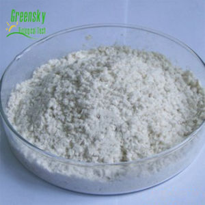 Greensky Factory Huperzine Serrata Herbal Extract pictures & photos