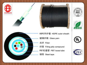 Gyfxts Armored Central Tube Access Optical Cables Form China pictures & photos