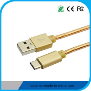 Type-C to USB 2.0am Cable with Metal Spring Body