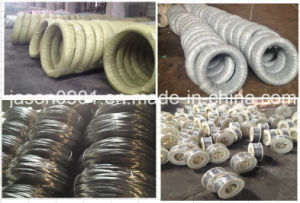 Ungalvanized or Galvanized High Carbon Wire 1.0mm, 1.2mm... pictures & photos