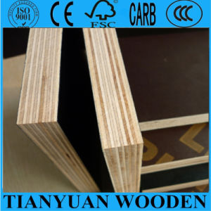 Brown Film Faced Plywood for Building pictures & photos