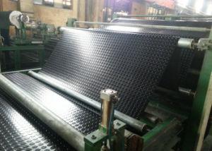 Neoprene Rubber Sheet, Neoprene Sheets, Neoprene Sheeting for Industrial Seal pictures & photos