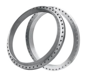 Custom High Quality Flange pictures & photos