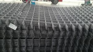 Metal Mesh Wire Mesh Panel pictures & photos