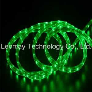220VAC RGB LED Strip Light 3528SMD Kit LED Neon Sign pictures & photos