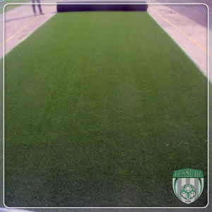 Lawn Bowling Heavy Metal Free Artificial Synthetic Grass pictures & photos