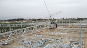 Film, Venlo, Glass Greenhouse Multi Span Steel Structure pictures & photos