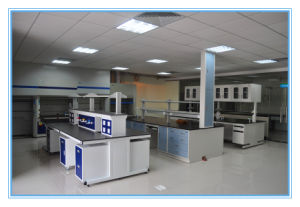 High School Lab Bench with Good Quality pictures & photos