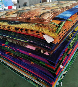 Most Popular Printing Carpet, Mat, Rug 100% Polyester pictures & photos