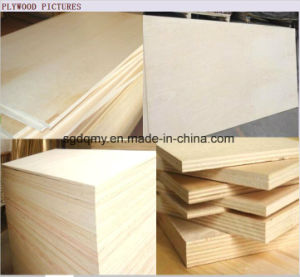 Best Quality 5mm Thickness Plywood for Furniture Grade pictures & photos