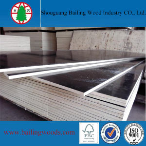 Good Quality Film Faced Plywood for Concrete Formwork