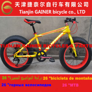 "20"" Snow Bicycle/ MTB Design 7s pictures & photos"