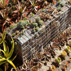 Standard Size Gabions Planter Box pictures & photos