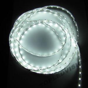 White Color LED Strip 60LEDs/M pictures & photos