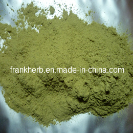 Natural Ephedra Herb Powder