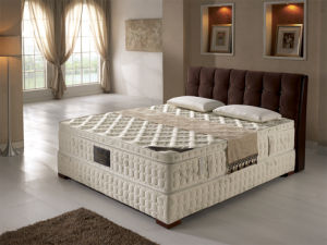 Pocket Compress Memory Foam Spring Mattress (AM1588)