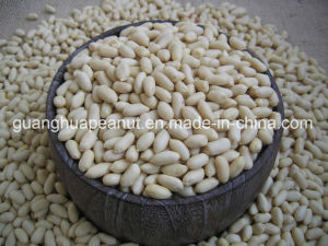 Blanched Peanut Kernel pictures & photos