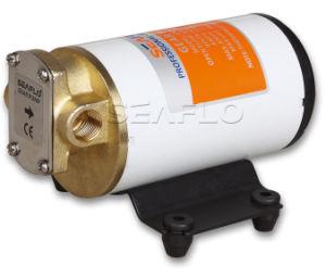 24V Diesel Transfer Pump Gear Pumps pictures & photos