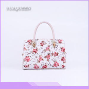 Best Seller & Fashionable Color Combination Lady Leather Handbag (DX-HAG2842)