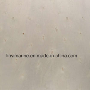 Poplar Face and Back Hard Wood Core Plywood for Furniture pictures & photos