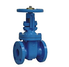 Rising Stem Metal Seated Gate Valve BS5163 pictures & photos