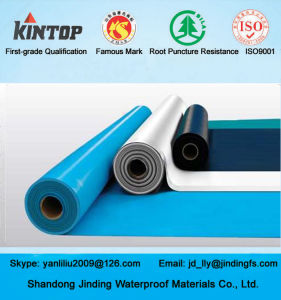 Customize blue PVC Waterproof Membrane pictures & photos