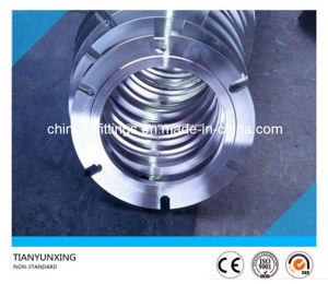 Non-Standard Special Forged F321 Stainless Steel Flanges pictures & photos