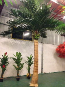 Artificial Plants and Flowers of Royal Indonesia Palm Gu-SL63656 pictures & photos