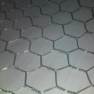 Hexagonal Wire Netting/Chicken Wire/Hexagonal Wire Mesh pictures & photos