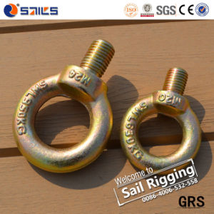 Carbon Steel Galvanized JIS 1168 Lifting Eye Screw pictures & photos